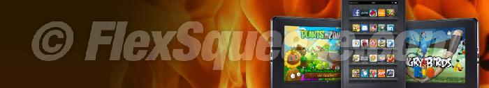 Niche website header image kindlefire.jpg
