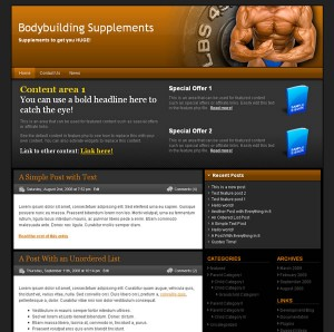 Bodybuilding Niche Blog